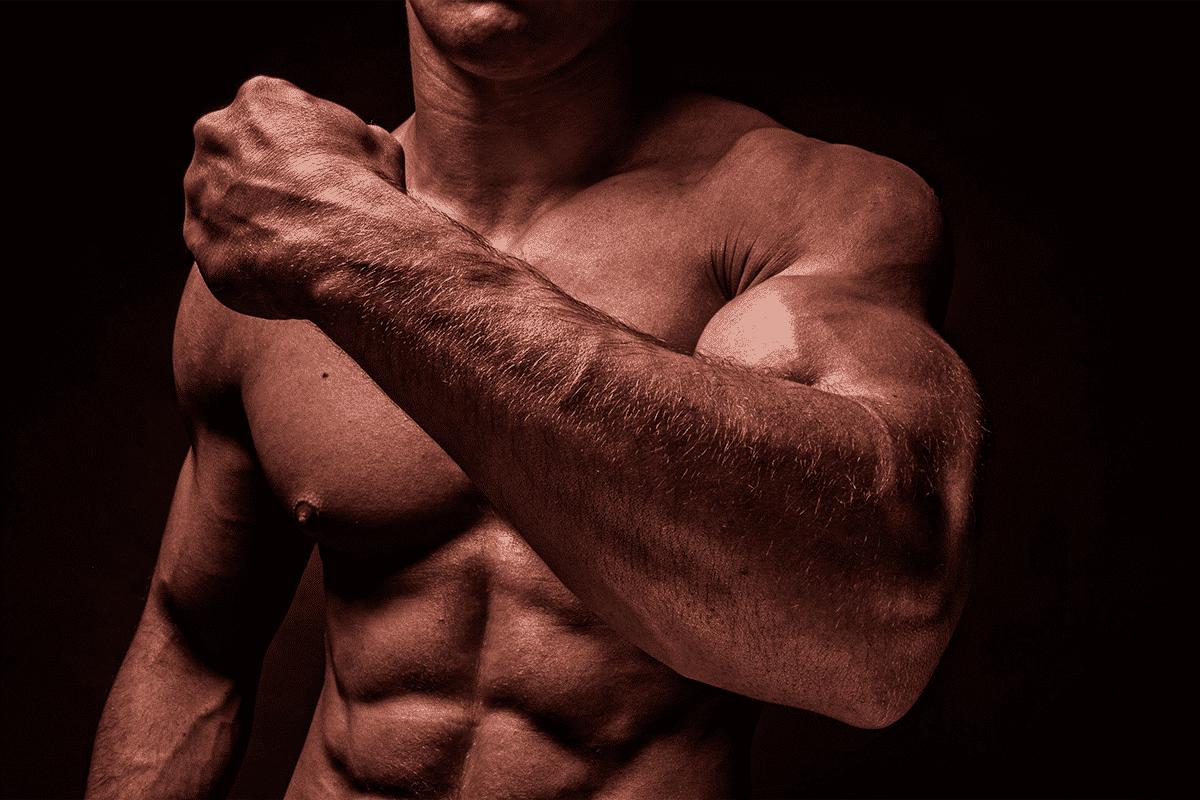 cual es la mejor proteína para ganar masa muscular sin engordar